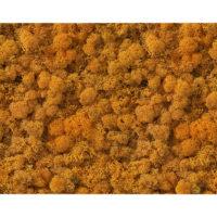 NM-200-60X40-Panespol-Natural-Moss-Orange-60X40